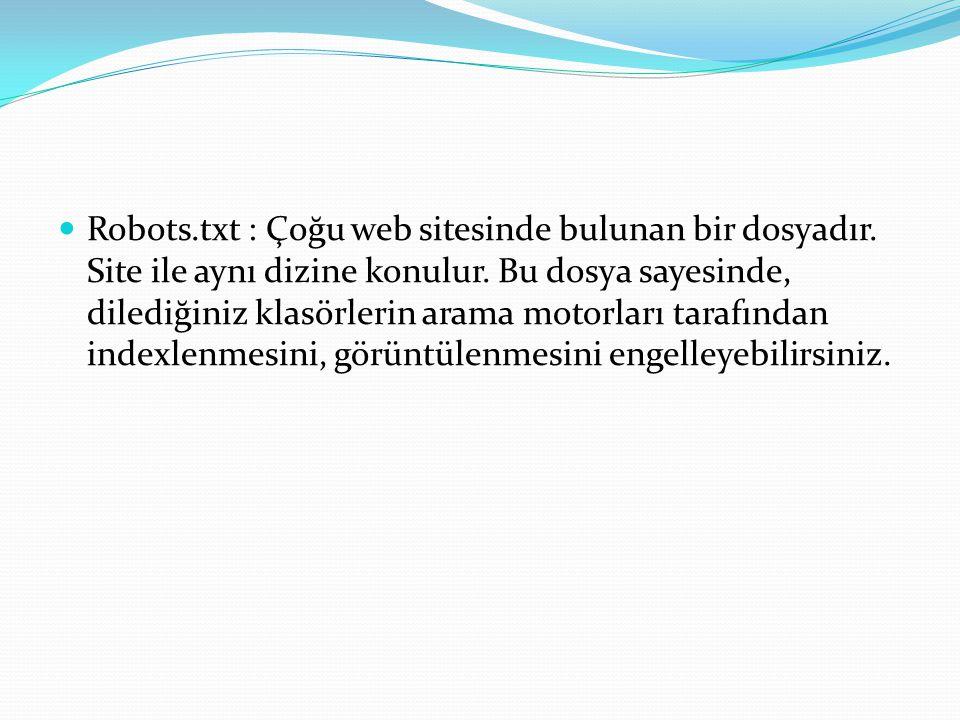 Robots.txt : Çoğu web sitesinde bulunan bir dosyadır.