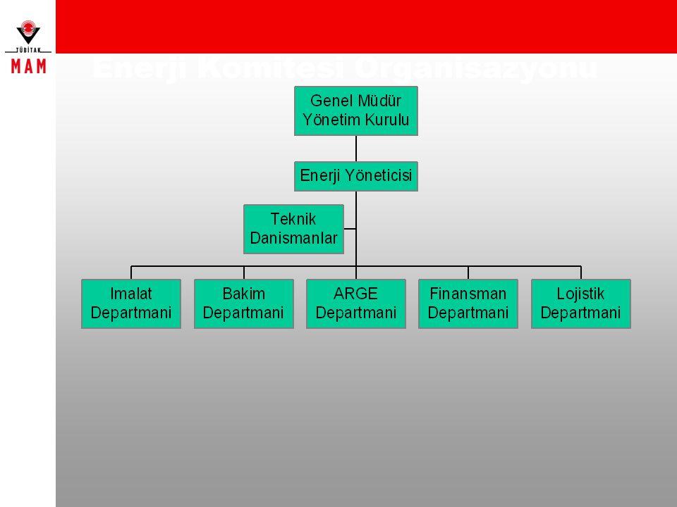 Enerji Komitesi Organisazyonu