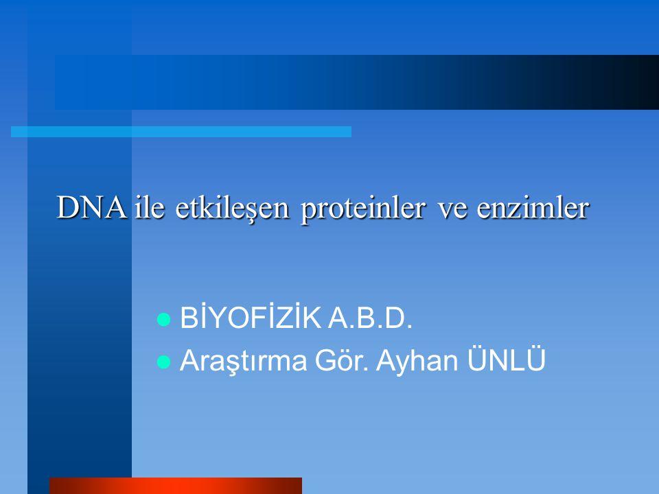 DNA ile etkileşen proteinler ve enzimler BİYOFİZİK A.B.D. Araştırma Gör. Ayhan ÜNLÜ