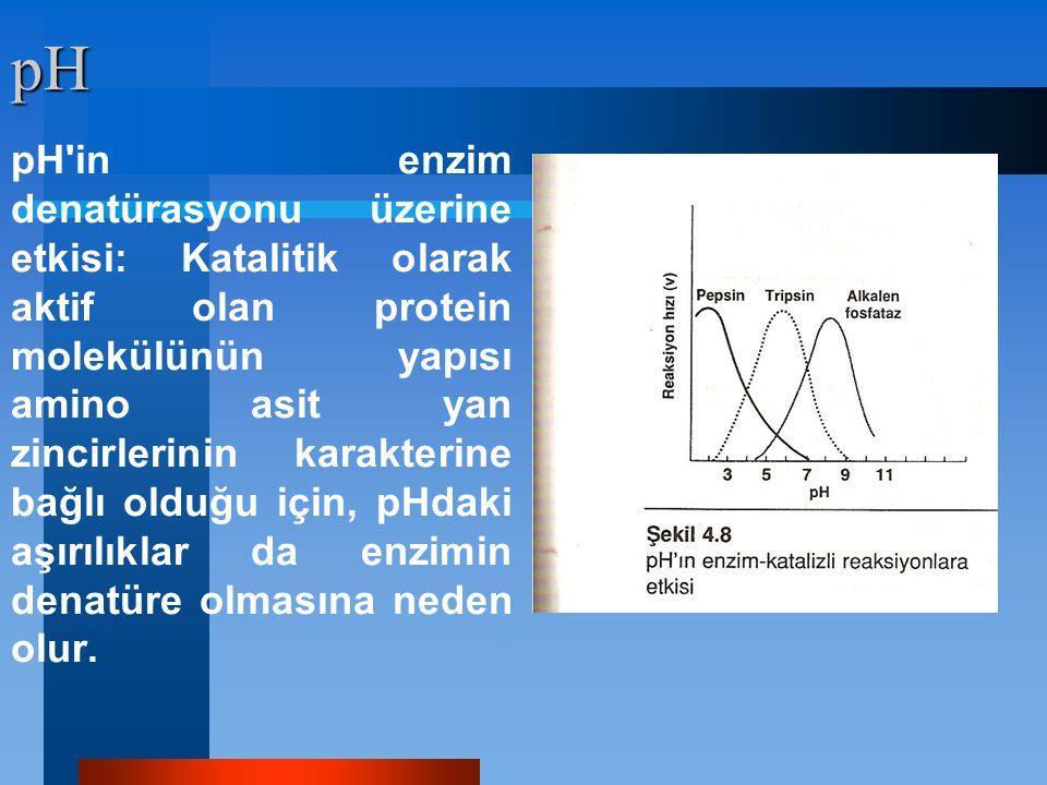 pH pH'in enzim denatürasyonu üzerine etkisi: Katalitik olarak aktif olan protein molekülünün yapısı amino asit yan zincirlerinin karakterine bağlı old