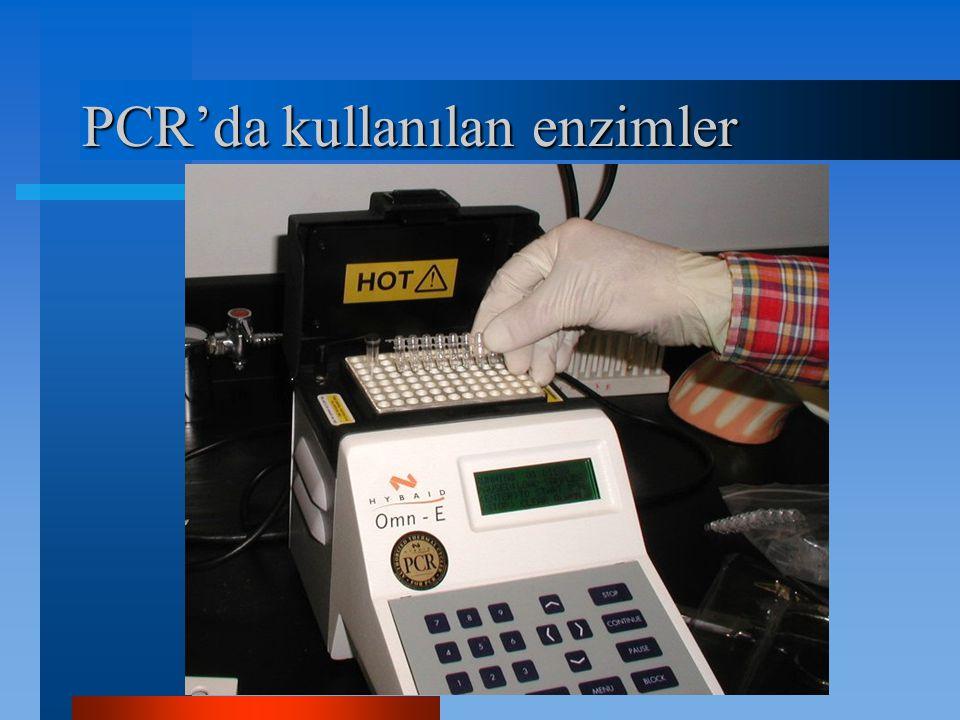 PCR'da kullanılan enzimler