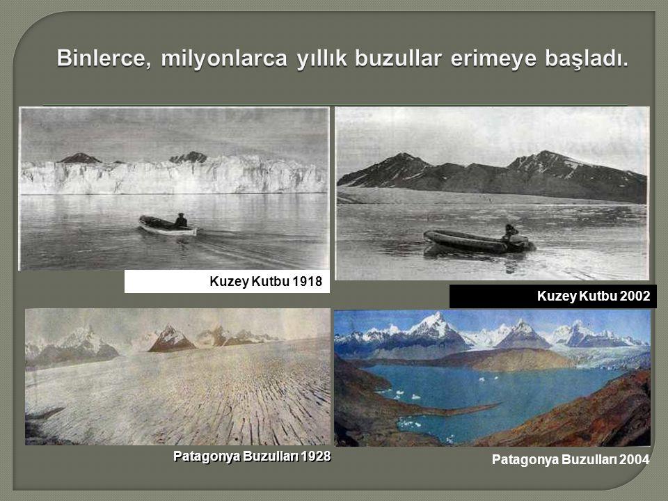 Kuzey Kutbu 1918 Patagonya Buzulları 1928 Kuzey Kutbu 2002 Patagonya Buzulları 2004