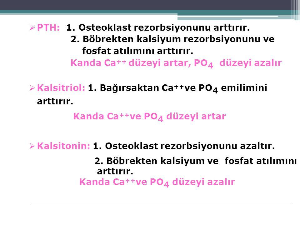  PTH: 1. Osteoklast rezorbsiyonunu arttırır. 2. Böbrekten kalsiyum rezorbsiyonunu ve fosfat atılımını arttırır. Kanda Ca ++ düzeyi artar, PO 4 düzeyi