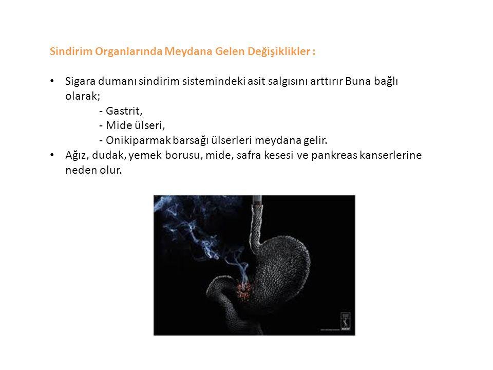 Sindirim Organlarında Meydana Gelen Değişiklikler : Sigara dumanı sindirim sistemindeki asit salgısını arttırır Buna bağlı olarak; - Gastrit, - Mide ü