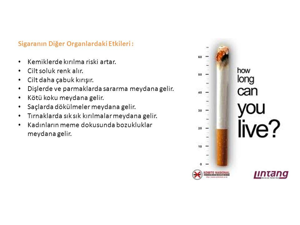 Sigaranın Diğer Organlardaki Etkileri : Kemiklerde kırılma riski artar. Cilt soluk renk alır. Cilt daha çabuk kırışır. Dişlerde ve parmaklarda sararma