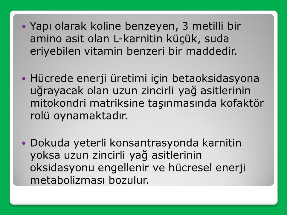 L-KARNİTİN