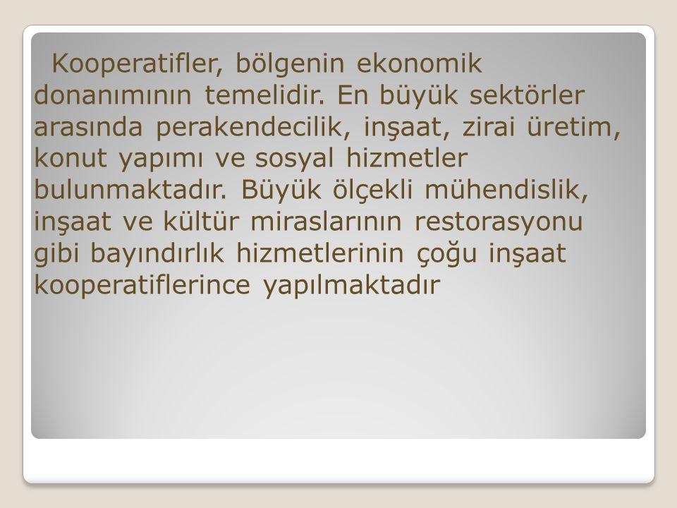 Kooperatifler, bölgenin ekonomik donanımının temelidir.
