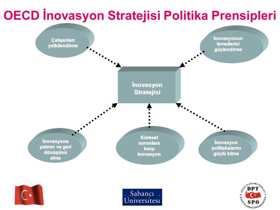 OECD İnovasyon Stratejisi Politika Prensipleri Çalışanları yetkilendirme İnovasyonun temellerini güçlendirme İnovasyon politiakalarını güçlü kılma İno