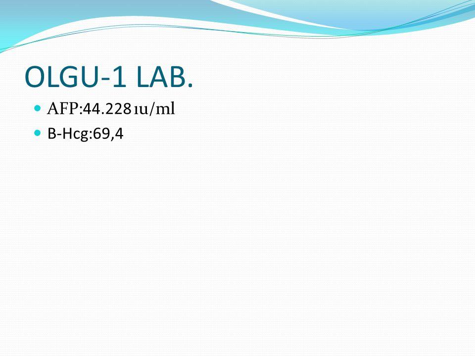 OLGU-1 LAB. AFP:44.228 ıu/ml B-Hcg:69,4