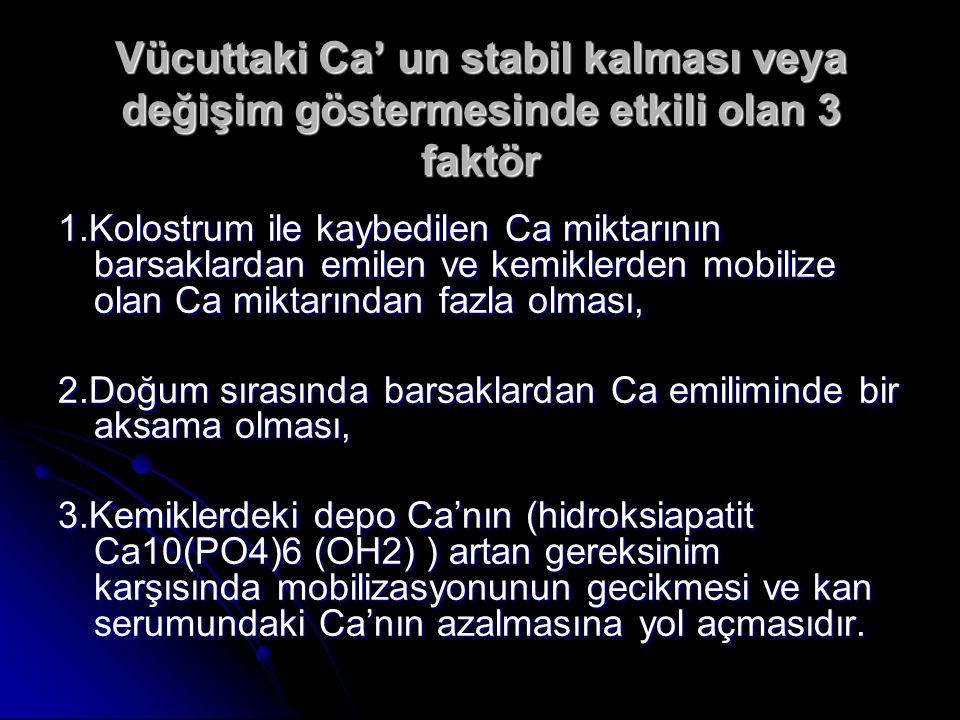Vücuttaki Ca' un stabil kalması veya değişim göstermesinde etkili olan 3 faktör 1.Kolostrum ile kaybedilen Ca miktarının barsaklardan emilen ve kemiklerden mobilize olan Ca miktarından fazla olması, 2.Doğum sırasında barsaklardan Ca emiliminde bir aksama olması, 3.Kemiklerdeki depo Ca'nın (hidroksiapatit Ca10(PO4)6 (OH2) ) artan gereksinim karşısında mobilizasyonunun gecikmesi ve kan serumundaki Ca'nın azalmasına yol açmasıdır.