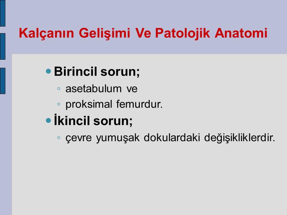 Kalçanın Gelişimi Ve Patolojik Anatomi Birincil sorun; ◦ asetabulum ve ◦ proksimal femurdur.