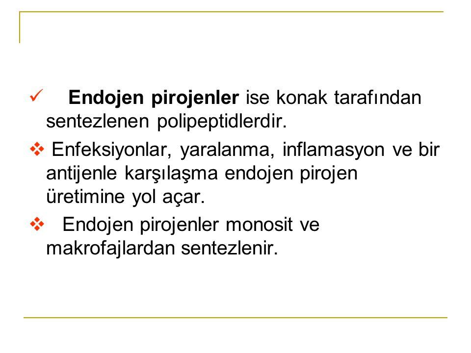 Endojen pirojenler ise konak tarafından sentezlenen polipeptidlerdir.
