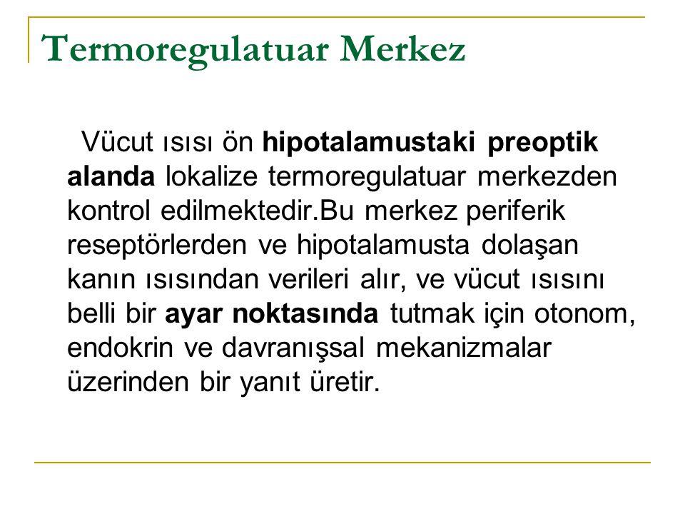 Termoregulatuar Merkez Vücut ısısı ön hipotalamustaki preoptik alanda lokalize termoregulatuar merkezden kontrol edilmektedir.Bu merkez periferik rese