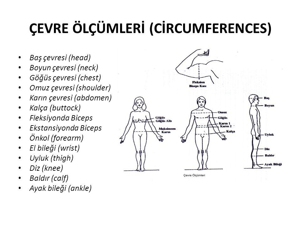 ÇEVRE ÖLÇÜMLERİ (CİRCUMFERENCES) Baş çevresi (head) Boyun çevresi (neck) Göğüs çevresi (chest) Omuz çevresi (shoulder) Karın çevresi (abdomen) Kalça (buttock) Fleksiyonda Biceps Ekstansiyonda Biceps Önkol (forearm) El bileği (wrist) Uyluk (thigh) Diz (knee) Baldır (calf) Ayak bileği (ankle)