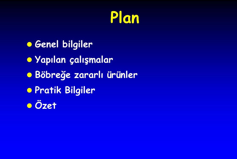 Plan l Genel bilgiler l Yapılan çalışmalar l Böbreğe zararlı ürünler l Pratik Bilgiler l Özet