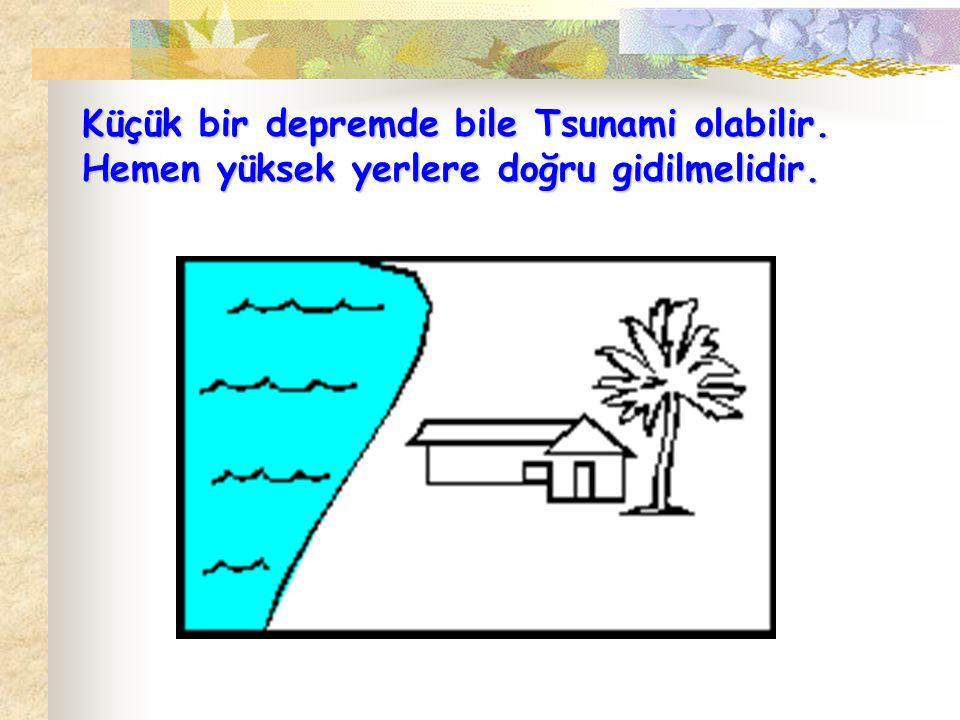 Küçük bir depremde bile Tsunami olabilir. Hemen yüksek yerlere doğru gidilmelidir.
