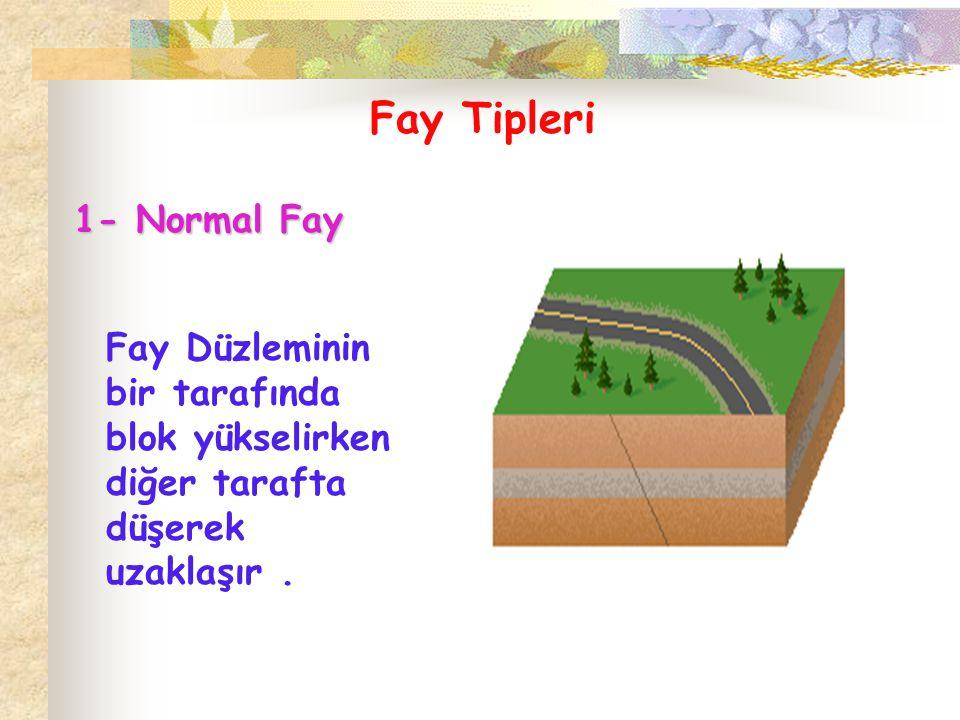 2- Ters Fay Bu tip faylar,hareket eğim yönünün tersi yönde olmaktadır..