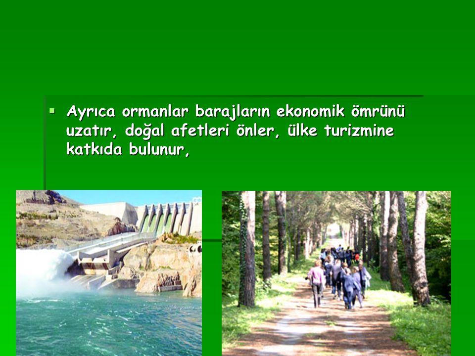  Ayrıca ormanlar barajların ekonomik ömrünü uzatır, doğal afetleri önler, ülke turizmine katkıda bulunur,