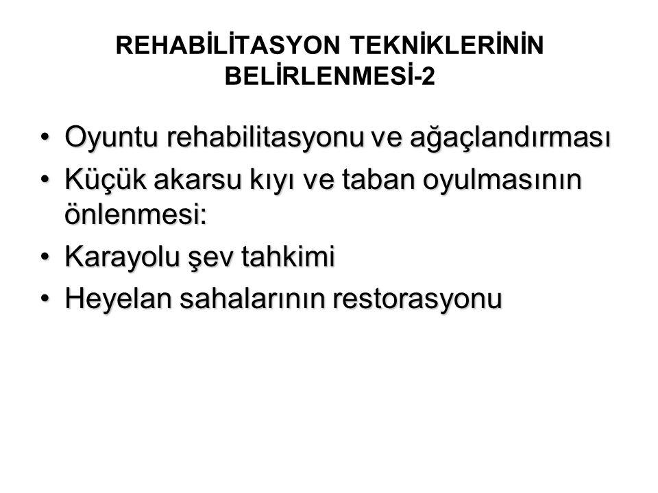 REHABİLİTASYON TEKNİKLERİNİN BELİRLENMESİ-2 Oyuntu rehabilitasyonu ve ağaçlandırmasıOyuntu rehabilitasyonu ve ağaçlandırması Küçük akarsu kıyı ve taba