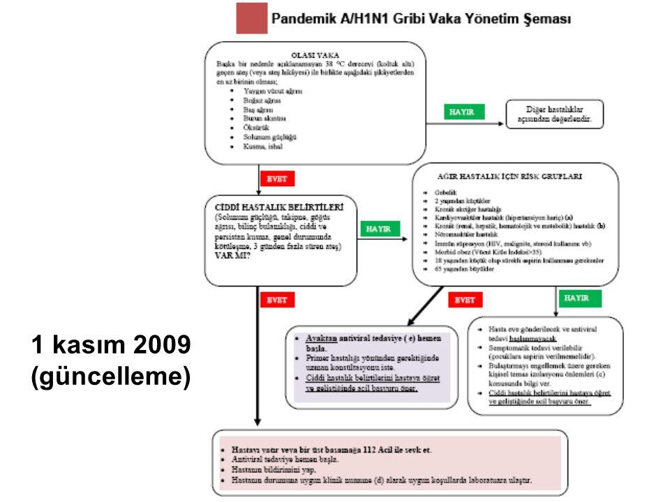 1 kasım 2009 (güncelleme)