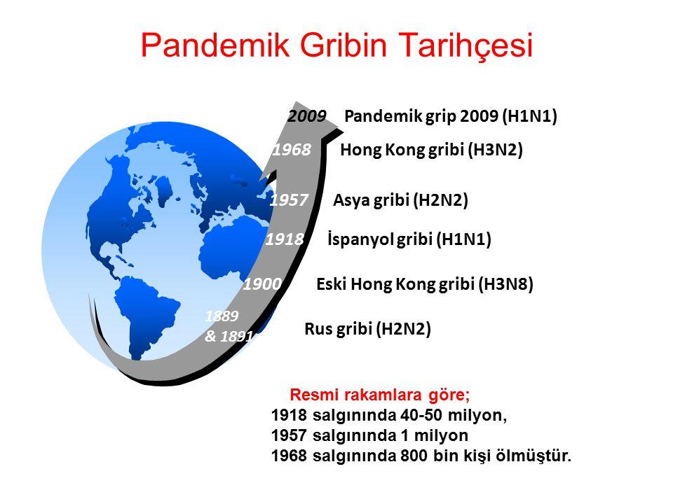 1918 1957 1968 Asya gribi (H2N2) Hong Kong gribi (H3N2) İspanyol gribi (H1N1) 1889 & 1891 Eski Hong Kong gribi (H3N8) Pandemik Gribin Tarihçesi Resmi rakamlara göre; 1918 salgınında 40-50 milyon, 1957 salgınında 1 milyon 1968 salgınında 800 bin kişi ölmüştür.