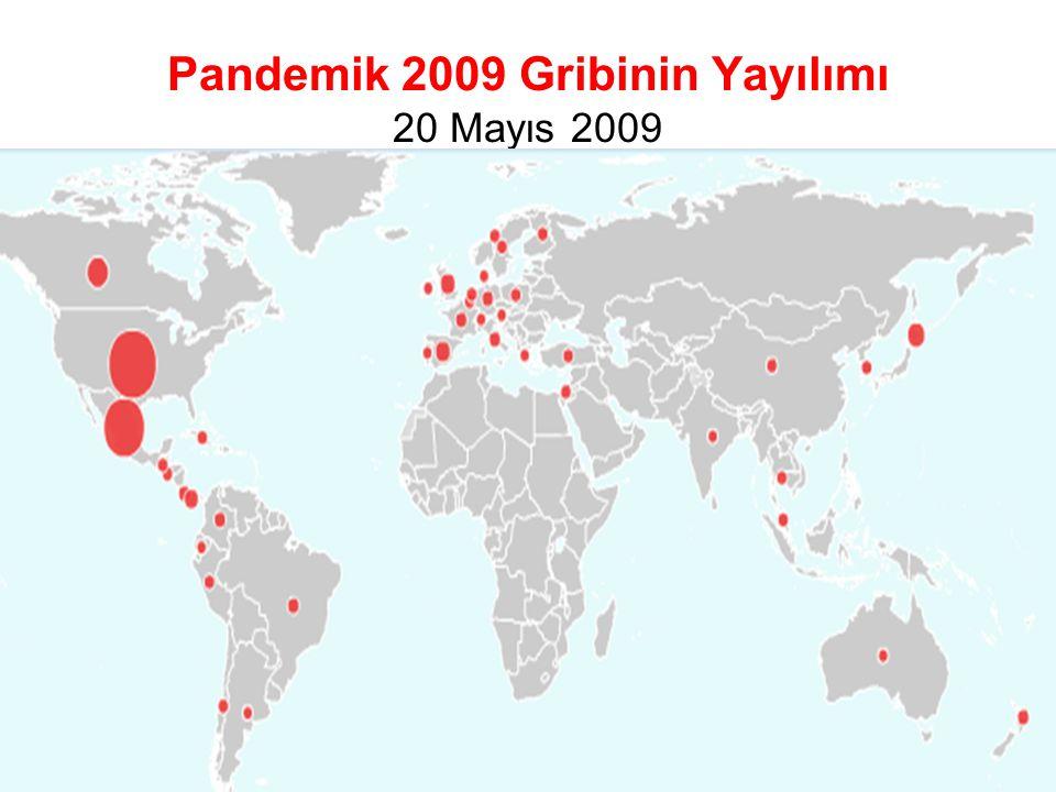 Pandemik 2009 Gribinin Yayılımı 20 Mayıs 2009 Şaşmaz T, 15 Ekim 2009 TSH İzmir 7