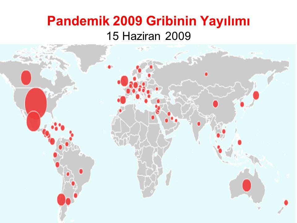 Pandemik 2009 Gribinin Yayılımı 15 Haziran 2009 Şaşmaz T, 15 Ekim 2009 TSH İzmir 8