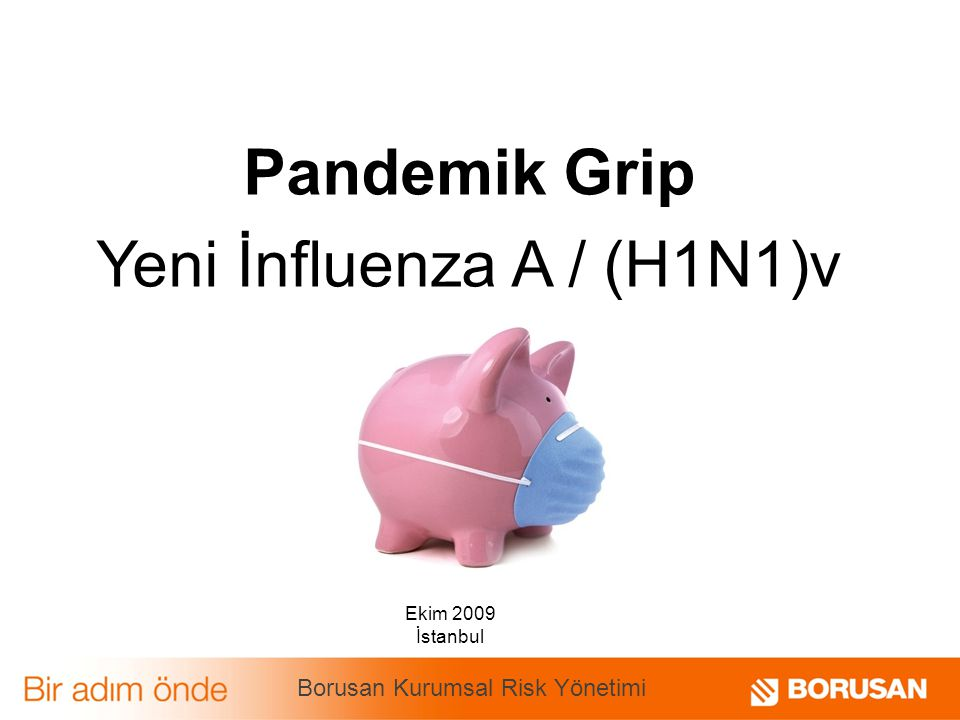 Pandemik Grip Yeni İnfluenza A / (H1N1)v Ekim 2009 İstanbul Borusan Kurumsal Risk Yönetimi