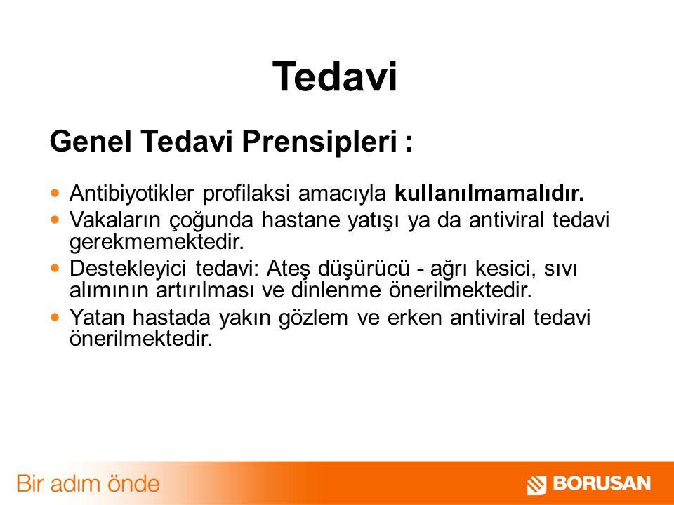 Tedavi Genel Tedavi Prensipleri : Antibiyotikler profilaksi amacıyla kullanılmamalıdır.