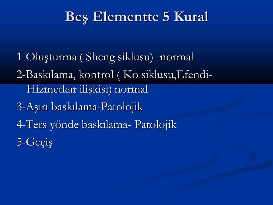Beş Elementte 5 Kural 1-Oluşturma ( Sheng siklusu) -normal 2-Baskılama, kontrol ( Ko siklusu,Efendi- Hizmetkar ilişkisi) normal 3-Aşırı baskılama-Patolojik 4-Ters yönde baskılama- Patolojik 5-Geçiş