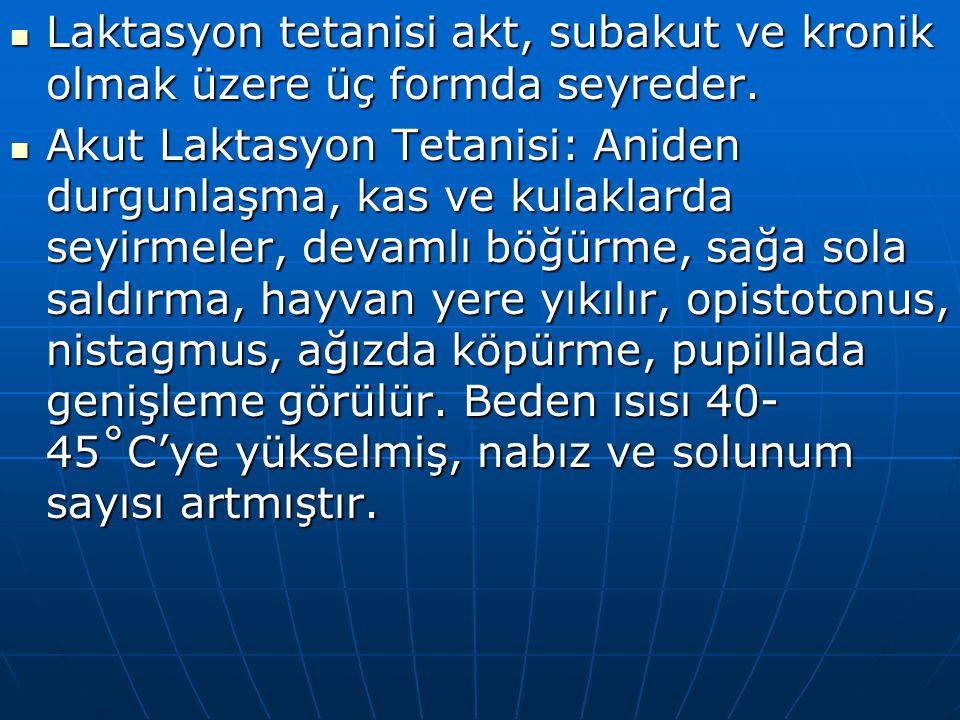 Laktasyon tetanisi akt, subakut ve kronik olmak üzere üç formda seyreder. Laktasyon tetanisi akt, subakut ve kronik olmak üzere üç formda seyreder. Ak