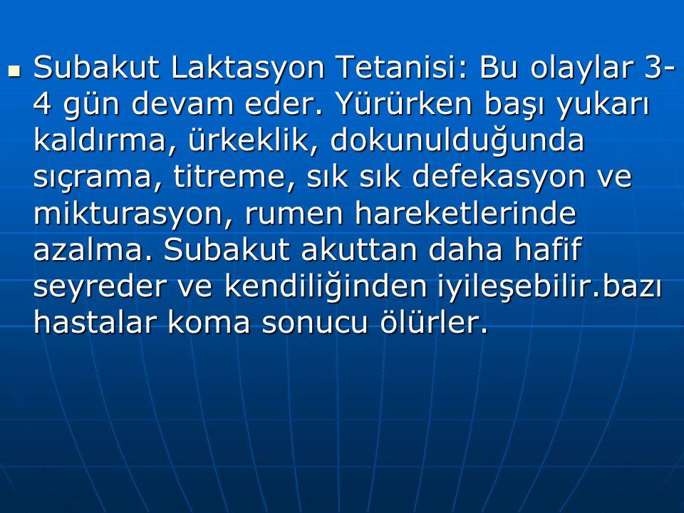 Subakut Laktasyon Tetanisi: Bu olaylar 3- 4 gün devam eder. Yürürken başı yukarı kaldırma, ürkeklik, dokunulduğunda sıçrama, titreme, sık sık defekasy