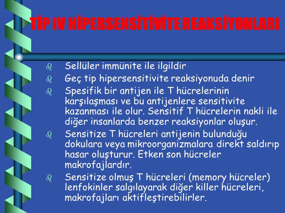 TİP III HİPERSENSİTİVİTE REAKSİYONLARI b İmmun kompleks ilişkili reaksiyonlardır.