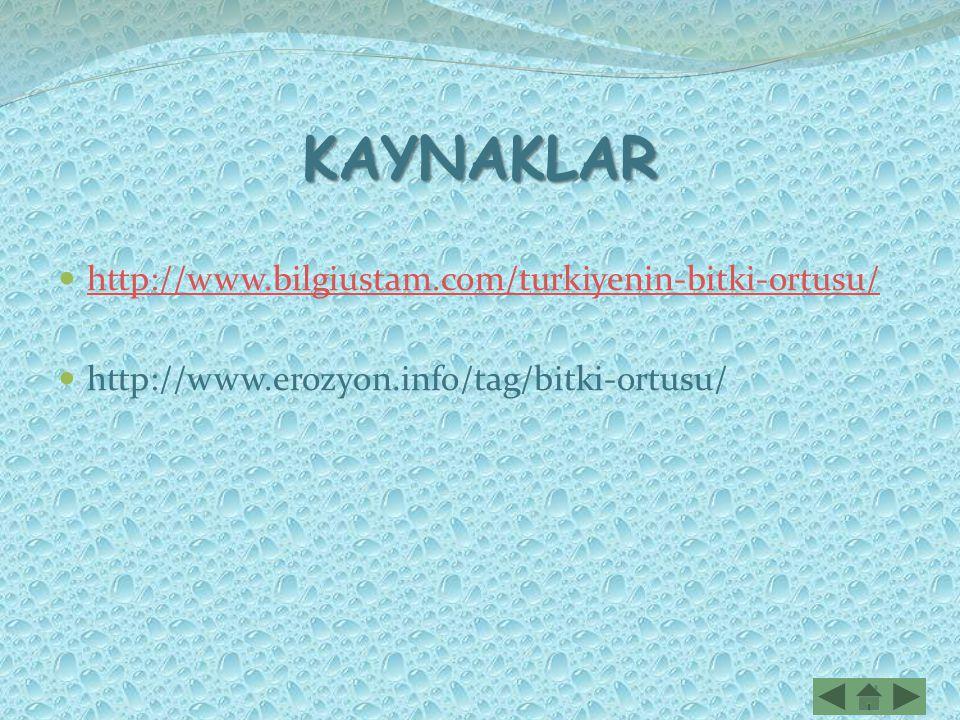 KAYNAKLAR http://www.bilgiustam.com/turkiyenin-bitki-ortusu/ http://www.erozyon.info/tag/bitki-ortusu/