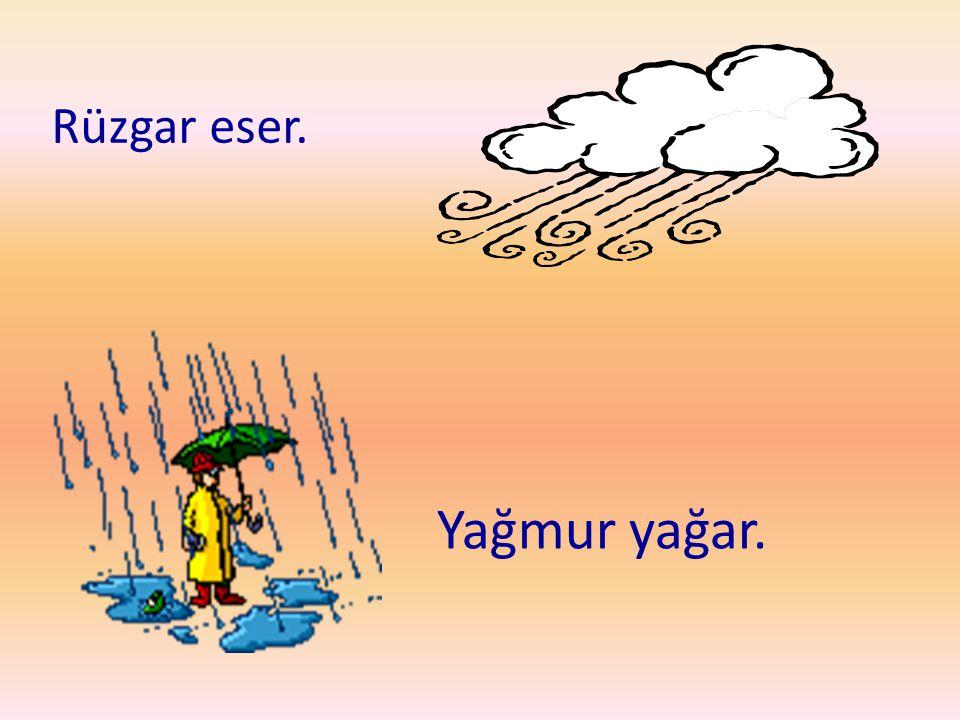 Rüzgar eser. Yağmur yağar.