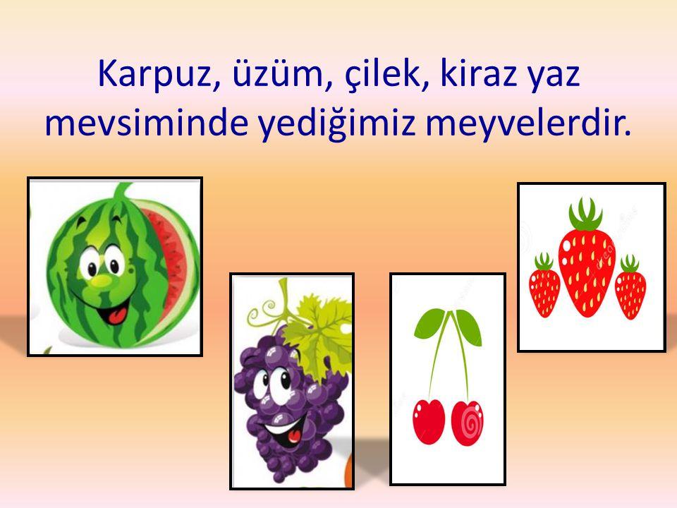 Karpuz, üzüm, çilek, kiraz yaz mevsiminde yediğimiz meyvelerdir.