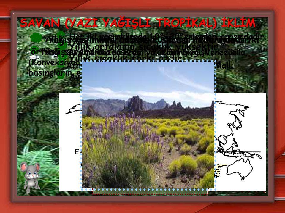 SAVAN (YAZI YAĞIŞLI TROPİKAL) İKLİM  Her iki yarımkürede 10°-20°enlemleri arasındadır.