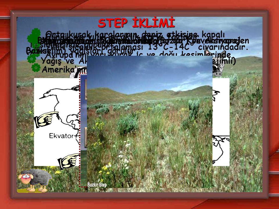 STEP İKLİMİ  Orta kuşak karalarının deniz etkisine kapalı kesimlerinde görülür.  Avrupa'nın yarı kurak iç ve doğu kesimlerinde,  Asya kıtasının iç