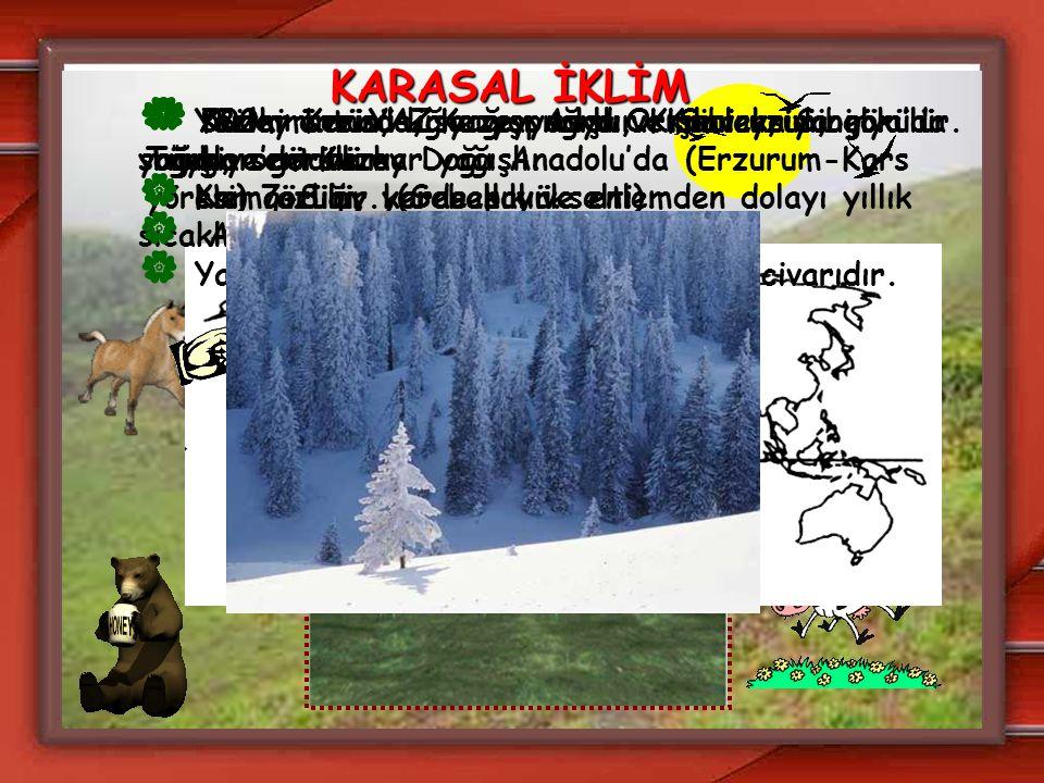 KARASAL İKLİM  Kuzey Kanada, Kuzey Asya ve Sibirya'da görülür. Türkiye'de Kuzey Doğu Anadolu'da (Erzurum-Kars yöresi) görülür. (Sebep yükselti).  Ya
