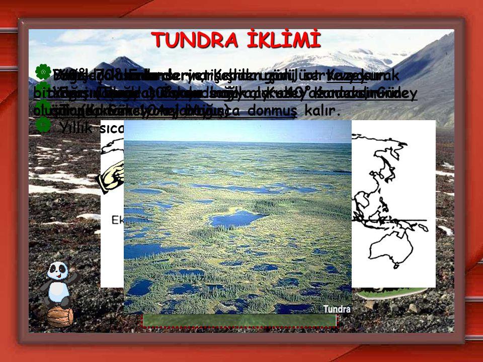 TUNDRA İKLİMİ  60°-70° Enlemleri arasında görülür. Kuzey Sibirya, İzlanda, İskandinavya, Kuzey Kanada, Güney Grönland, Güney Arjantin.  Yazlar kısa
