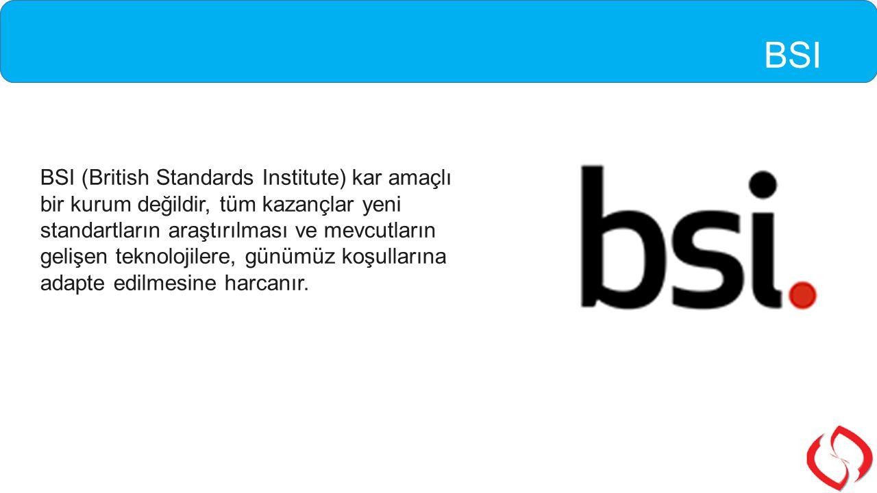 BSI (British Standards Institute) kar amaçlı bir kurum değildir, tüm kazançlar yeni standartların araştırılması ve mevcutların gelişen teknolojilere,