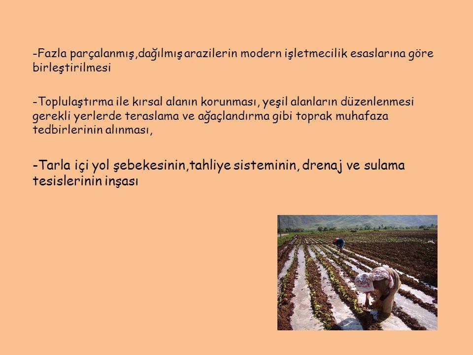 -Fazla parçalanmış,dağılmış arazilerin modern işletmecilik esaslarına göre birleştirilmesi -Toplulaştırma ile kırsal alanın korunması, yeşil alanların