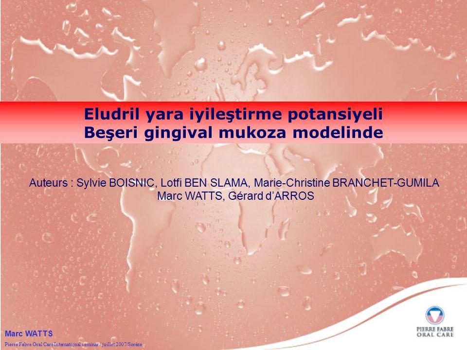 Pierre Fabre Oral Care International seminar / juillet 2007/Sorèze Marc WATTS Eludril yara iyileştirme potansiyeli Beşeri gingival mukoza modelinde Au