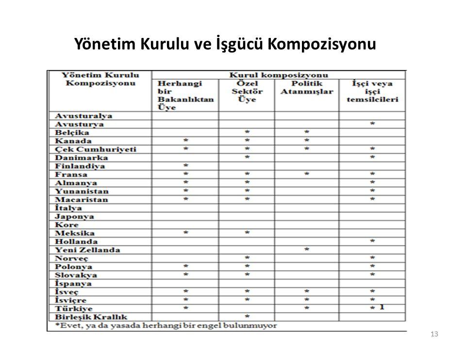 Yönetim Kurulu ve İşgücü Kompozisyonu 13