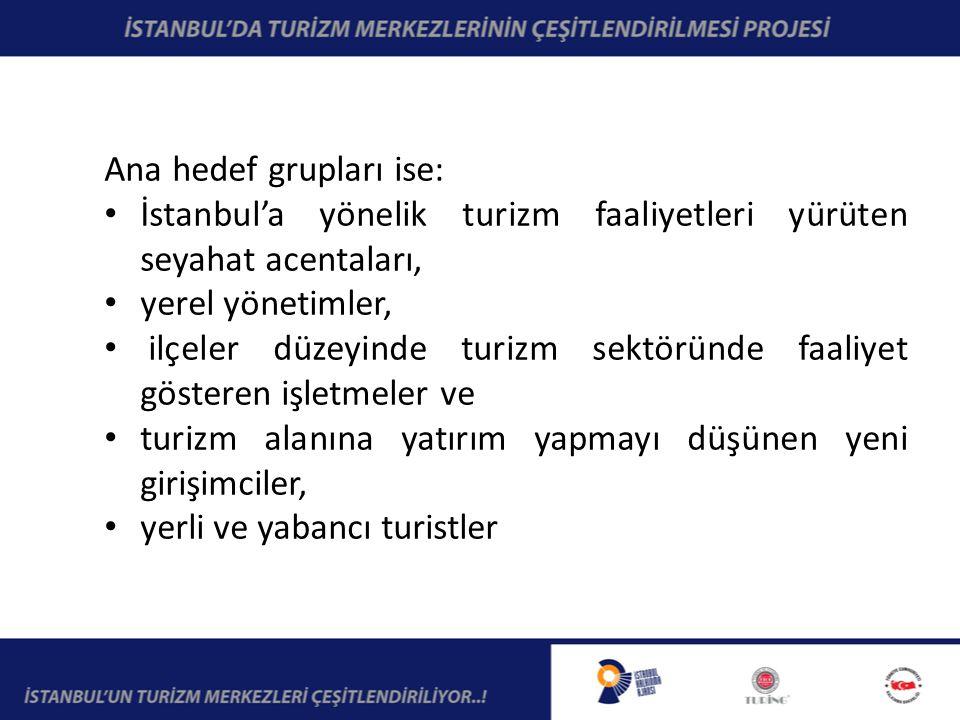 Ana hedef grupları ise: İstanbul'a yönelik turizm faaliyetleri yürüten seyahat acentaları, yerel yönetimler, ilçeler düzeyinde turizm sektöründe faaliyet gösteren işletmeler ve turizm alanına yatırım yapmayı düşünen yeni girişimciler, yerli ve yabancı turistler