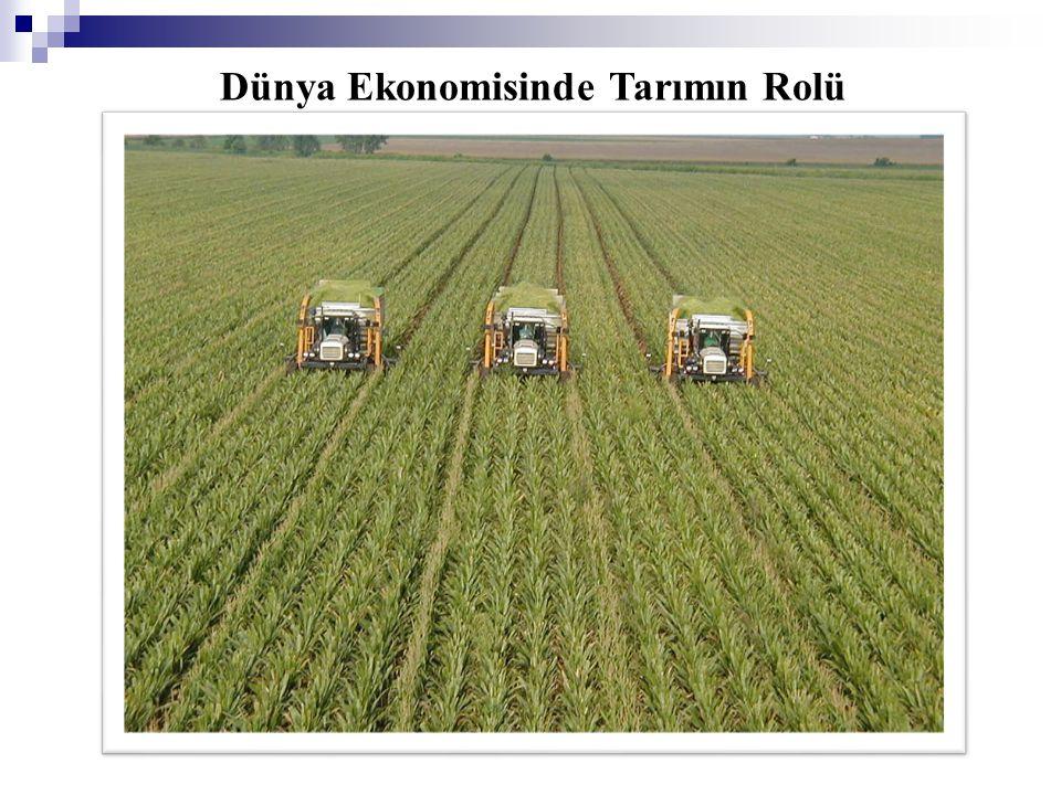 Dünya nüfusunun yaklaşık yarısı kırsal kesimde tarımsal faaliyet içerisindedir.
