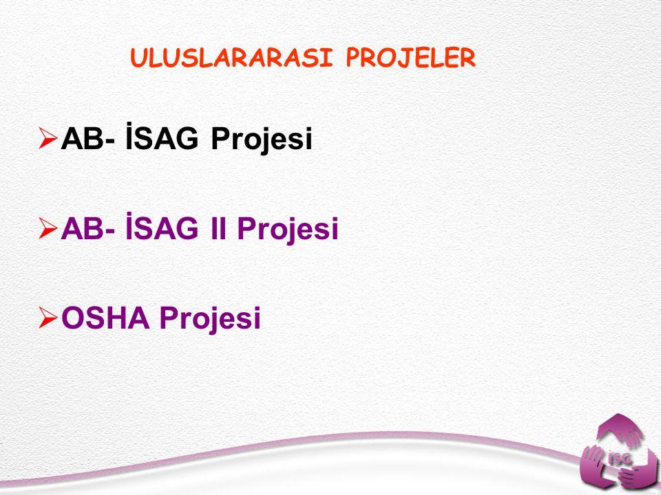 ULUSLARARASI PROJELER  AB- İSAG Projesi  AB- İSAG II Projesi  OSHA Projesi
