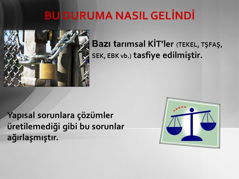 Bazı t arımsal KİT'ler (TEKEL, TŞFAŞ, SEK, EBK vb.) tasfiye edilmiştir.