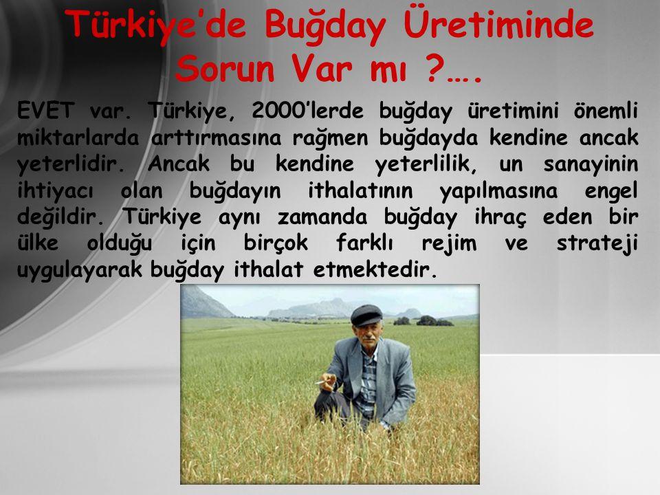 Türkiye'de Buğday Üretiminde Sorun Var mı ?….EVET var.