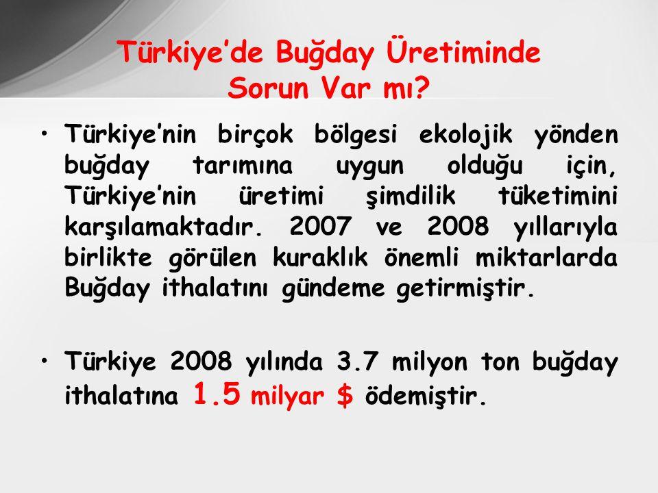 Türkiye'nin birçok bölgesi ekolojik yönden buğday tarımına uygun olduğu için, Türkiye'nin üretimi şimdilik tüketimini karşılamaktadır.